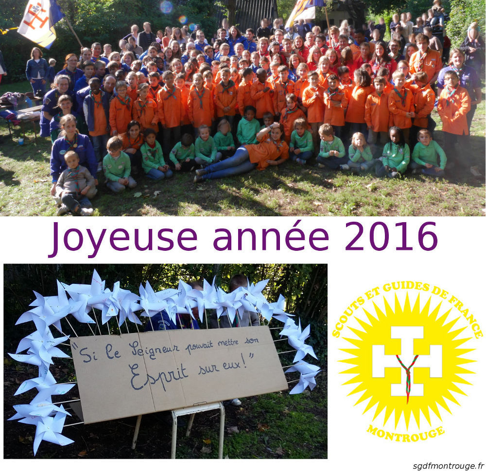 VoeuxSGDF2016Montrouge_site